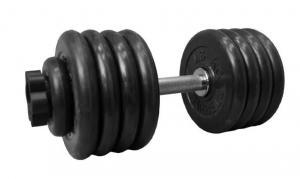 Гантель разборная 49 кг (D 51 мм)