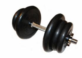 Гантели разборные 21,5 кг