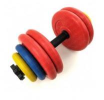 Гантель разборная цветная 29 кг